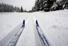 Przecinającego kraju narciarstwo, świeży ślad w Modrava obraz royalty free