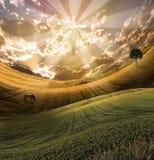 przecinający światło promieniuje niebo ilustracji