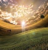 przecinający światło promieniuje niebo royalty ilustracja