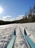 przecinający kraju narciarstwo Obrazy Royalty Free