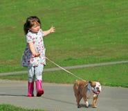 Przecinający trakenu psa niebezpieczeństwa pojęcie Zdjęcie Stock