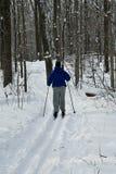 przecinająca kraj narciarka Fotografia Stock