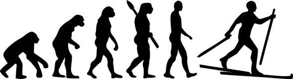 Przecinającego kraju narty ewolucja Zdjęcie Royalty Free