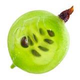 przecinającej owocowej agresta zieleni makro- sekcja Obraz Royalty Free
