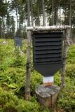 Przeciw drzewnym zarazom lasowy gacenie Obrazy Stock