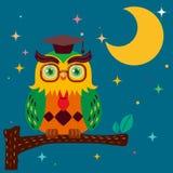 przeciw noc sowy nieba gwiazdzie mądrej Fotografia Stock
