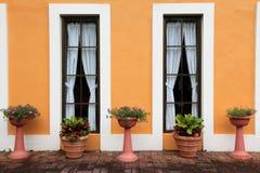 Przeciw okno Francuskiemu okno kwiatów garnki fotografia stock