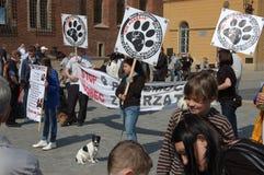 przeciw protestacyjnej Poland przemoc Zdjęcia Royalty Free