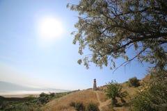 Przeciw tłu denny i jaskrawy słońce tam jest na górze bakan Zieleni drzewa na fotografii zdjęcie royalty free