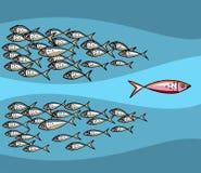 przeciw unikalnym rybim pływackim przypływem jest ilustracji
