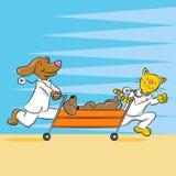 Przeciwawaryjny zwierzę domowe szpital ilustracji