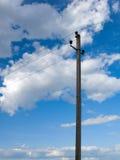 przeciwko elektrycznemu linii niebo Obraz Stock