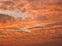 przed wschodem słońca w ranku Fotografia Royalty Free