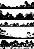 przedpole las Obrazy Stock