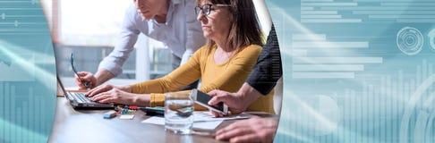 przedsiębiorcy pracują razem sztandar panoramiczny obraz royalty free