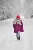 Przedstawiać zimy modę Obraz Stock