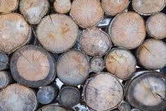 Przedziałowa drewniana ściana Obrazy Stock