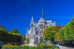 Przegląda piękną Notre Damae katedrę i kwiaty w S z ogródem Obraz Stock