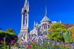 Przegląda piękną Notre Damae katedrę i kwiaty w S z ogródem Zdjęcie Royalty Free