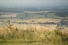 Przegląda przez Angielskiego wieś krajobraz podczas późne lato wigilii Zdjęcia Stock