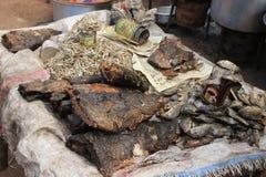 Przegniła ryba z komarnicami na kontuarze w jeden biedni regiony Afryka, Kibera -, Nairobia, zdjęcie royalty free
