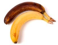 Przegniły żółty banan odizolowywający na białym tle Zdjęcia Stock