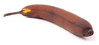 Przegniły banan odizolowywający na białym tle fotografia royalty free