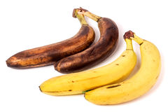 Przegnili i dojrzali banany odizolowywający na białym tle fotografia royalty free