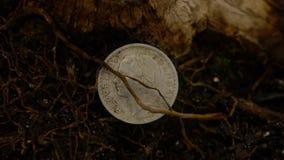 Przegrana frank moneta zdjęcie royalty free