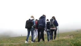 Przegrana grupa próbuje znajdować out prawego sposób na mgłowym góra wierzchołku nastoletni przyjaciele sprawdza mapę - zbiory