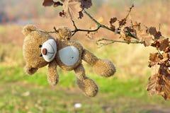 przegrany niedźwiedzia miś pluszowy Zdjęcia Stock