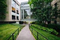 Przejście Hall i Griswold, przy Harvard Law School, w Cambridge, obrazy stock