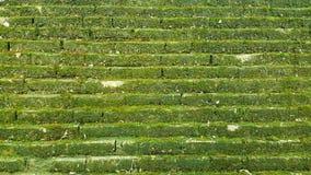 Przejście schodki plenerowi i tło fotografii zapas zdjęcia royalty free