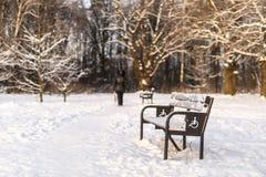 Przejście z ławkami w zima parku Obrazy Stock