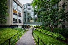 Przejście Hall i Griswold, przy Harvard Law School, w Cambridge, Zdjęcie Royalty Free