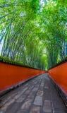 Przej?cie mi?dzy czerwieni ?cianami otacza? bambusami, Chengdu, porcelana zdjęcie royalty free