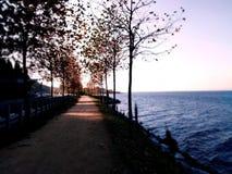 Przej?cie mi?dzy drzewami obok morza i zdjęcia royalty free