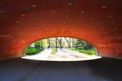 Przejście podziemne w central park, usa zdjęcia stock