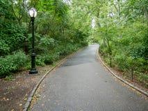 Przejście w jesieni central park Zdjęcie Stock