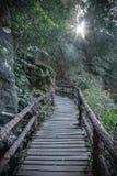 Przejście w Ob Luang parku narodowym, Tajlandia Obraz Stock