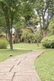 przejście w ogródzie, proces kolor Fotografia Royalty Free