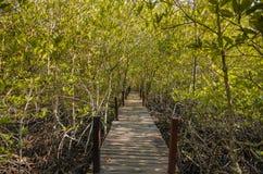 Przejście z drewnianym mostem Fotografia Stock