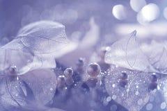Przejrzyści liście i perły Artystyczny skład kościec liście i perły obrazy stock