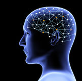 Przejrzysta 3d głowa mózg i osoba Obraz Stock