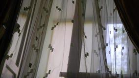 Przejrzysta Nadokienna zasłona na wiatrze w ranku zbiory wideo