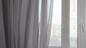 Przejrzysta szara zasłona na okno z storami w ranku, delikatnie ruszającym się wiatrem zdjęcie wideo