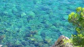Przejrzysta woda od Coasta Brava w Hiszpania zbiory wideo