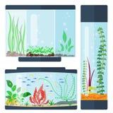 Przejrzystego akwarium siedliska zbiornika wodnego wektorowego ilustracyjnego domu rybiego zbiornika podwodny puchar royalty ilustracja