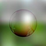 Przejrzysty mydlany bąbel na zamazanym zapasie Obrazy Stock
