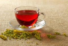 Przejrzysty szklany kubek z czerwoną kwiecistą herbatą Zdjęcie Stock